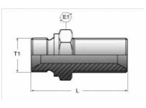 АДАПТЕР ПЕРЕБОРОЧНЫЙ BSP 60° (ISO 228 -PF)